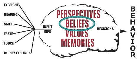 The values and beliefs of human